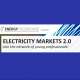 Electricity Markets 2.0. Young professionals network
